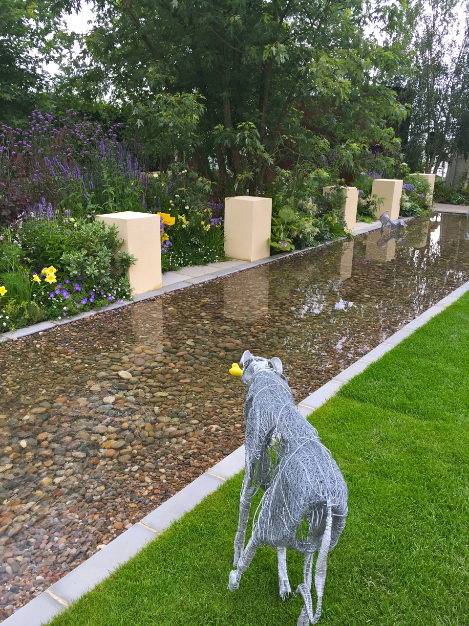 Dog day afternoon at Hampton Court Palace Flower Show