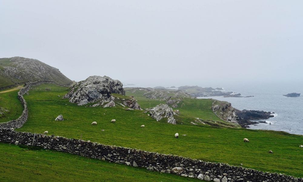 Misty Inishbofin